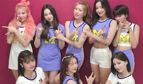 Netizens Think Momoland Used G.o.d Park Joonhyung's Trendy