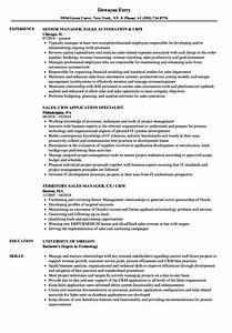 Computer Skills In Resume Sample Crm Sales Resume Samples Velvet Jobs