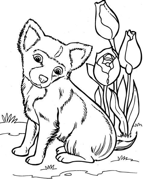 Dieren Kleurplaat Hond by Honden Kleurplaat Kleurplaat Honden