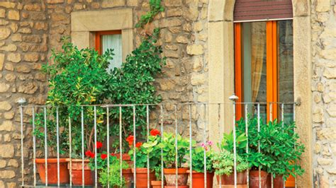un potager pour votre balcon les conseils des pros du