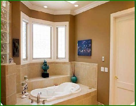 Popular Colors For Bathrooms 2014  Design Decoration