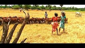 new Tamil album - YouTube
