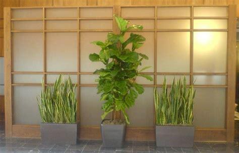 HD wallpapers wohnzimmer pflanzen pflegeleicht