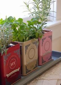 Sieb Für Erde Selber Bauen : kr uterpflanzen immer friche kr uter handgreifbar zu hause haben ~ Buech-reservation.com Haus und Dekorationen