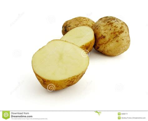 pomme de terre de tubercule image stock image 5898771