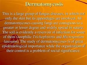 Dermatomycosis  Pathogenesis