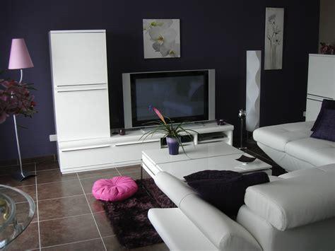 emejing salon noir avec rideau stunning deco salon moderne violet ideas design trends