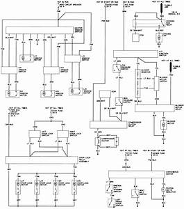 45 - Body Wiring Diagram  Continued