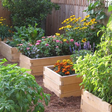 Natural Cedar Raised Garden Beds Eartheasycom