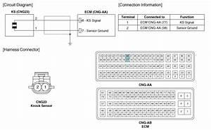 Hyundai Elantra  Knock Sensor  Ks   Schematic Diagrams