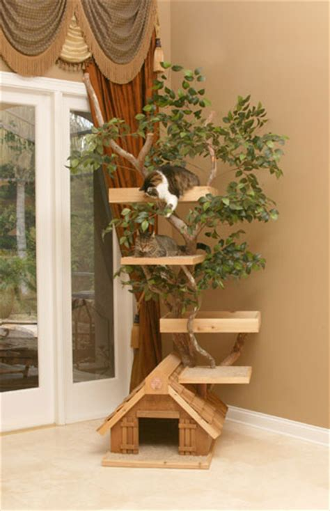 unique cat tree houses  real trees  pet tree house