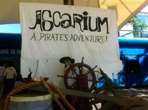 celebrate halloween    weekend  ascarium