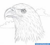 Easy To Draw Bald Eagl...