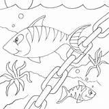 Fish Coloring Chain Cartoon Desenho Peixinhos Seipp Drawn Dave sketch template
