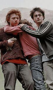 Pin by rebecca L.G on Harry Potter 4 | Harry potter ...