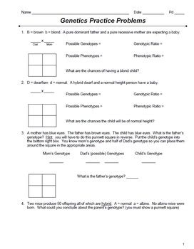 Punnett Square Practice Problems Worksheet Resultinfos