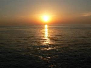 Schöne Delfin Bilder : bild sonnenuntergang zu delfin tour makadi bay in makadi bay ~ Frokenaadalensverden.com Haus und Dekorationen
