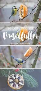 Futter Für Wildvögel Selber Machen : ber ideen zu vogelfutter auf pinterest selbst ~ Michelbontemps.com Haus und Dekorationen