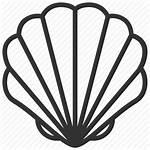 Icon Shell Cockle Seafood Seashell Icons Getdrawings