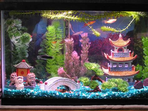 decor de fond aquarium cool aquarium decor http modtopiastudio