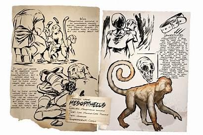 Ark Mesopithecus Dossier Survival Spawn Evolved Gamepedia