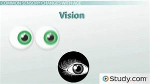 Eyes Vision  Assessment Of The Eye And Vision Quizlet