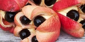 Weird Fruits - Bizarre Exotic Fruits