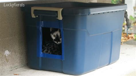 Making Another Diy Feral Cat Shelter For Outdoor Cats Diy Project Table Tooth Fairy Costume Tissue Paper Pom Personalized Notebooks Racing Simulator Treating Termites Asthma Inhaler Panel Wall