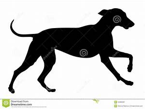 Dog Stock Image - Image: 34880061