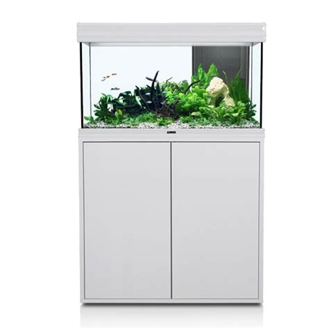 re eclairage aquarium 80 cm 28 images eclairage led m pour aquarium d eau douce de 80 cm