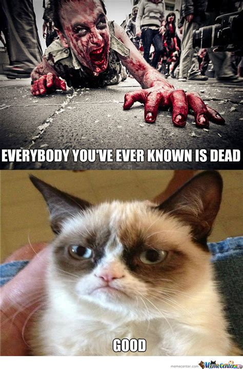 zombie funny memes meme cat apocalypse dead grumpy zombies call mouse known hilarious funniest kitty amazing xd tech humor support
