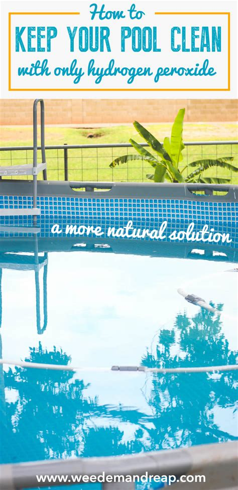 Convert Your Pool Into A Natural Swimming Pool (with
