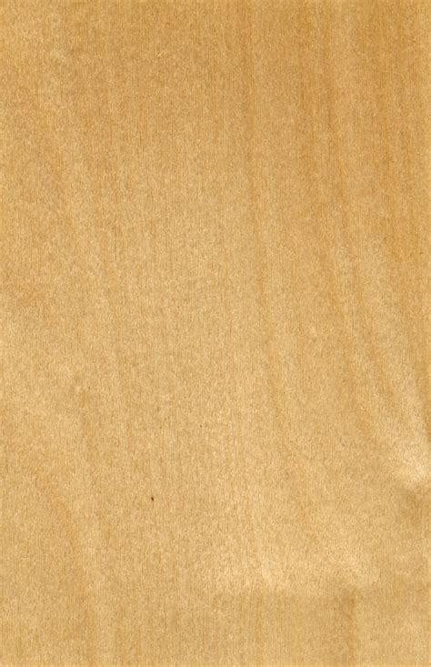 birkenholz preise fuer schnitt und brennholz