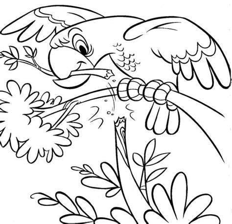coloring  blog archive zoo coloring pages