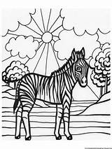 Coloring Pages Zebra Printable Animal Superb Books Coloringpages234 Related sketch template