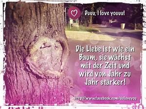 Baum Der Liebe : die liebe ist wie ein baum sie w chst mit der zeit und wird von jahr zu jahr st rker hast ~ Eleganceandgraceweddings.com Haus und Dekorationen