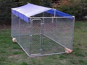 Dog kennel roof cover ideas jaws pinterest roof for Outside covered dog kennels
