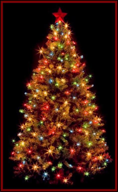 origin of the christmas tree delaware best template