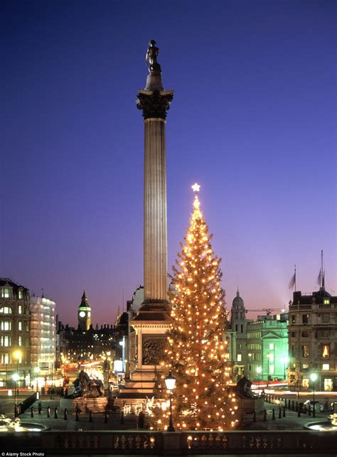 mailonline travel reveals   christmas trees