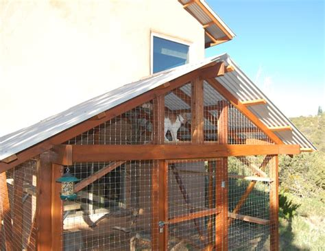 catio ideas the catio safely giving your cat the outdoors vines pets and the roof