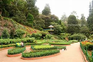 Ooty, Ooty botanical Garden, Nilgiri hills, Ooty Railway ...