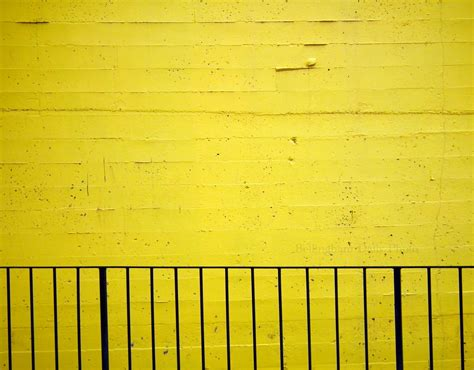 bellingham daily photo yellow wall