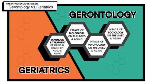 gerontology  geriatrics infographic