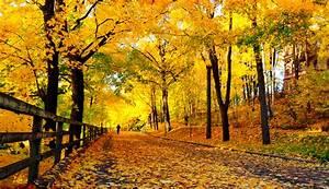 Autumn — VisitFinland.com