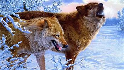 Wolves Animals Wallpapers Mammals Definition Updated Views