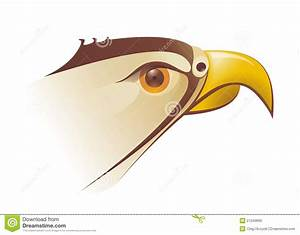 Falcons Head Illustration In Vector Royalty Free Stock ...