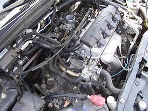 2003 Honda Civic Fuel Filter