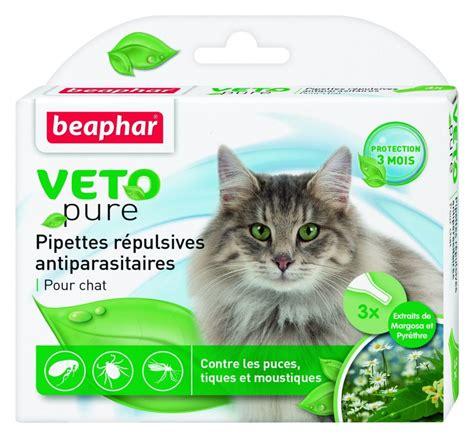 traitement puces chat maison traitement contre les puces maison beautiful with traitement contre les puces maison best