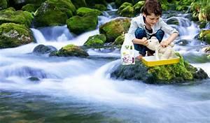 Waschmittel Richtig Dosieren : planet pure das kologische waschmittel land der ~ Eleganceandgraceweddings.com Haus und Dekorationen