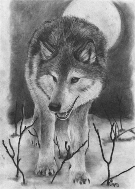 cool wolf drawings  inspiration
